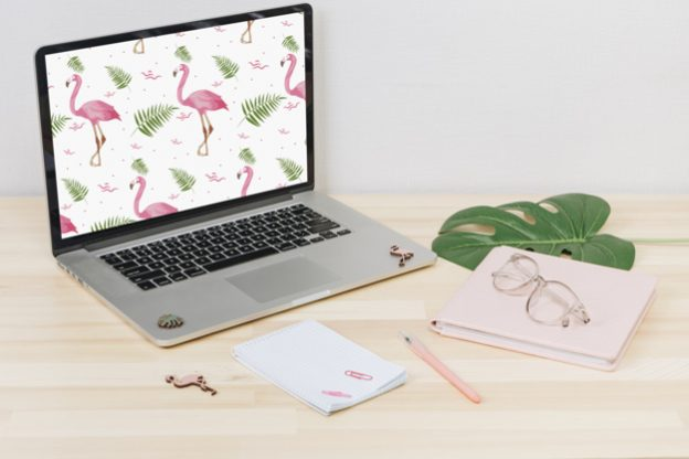 Laptop with flamingos on screen on table Free Photo